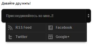 vidzhet_soc