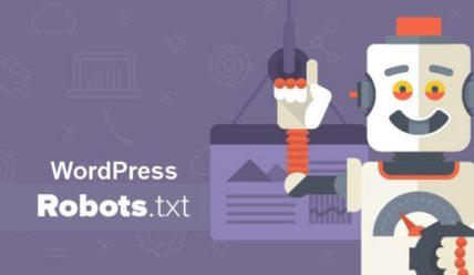 Правильный robots.txt для WordPress сайта