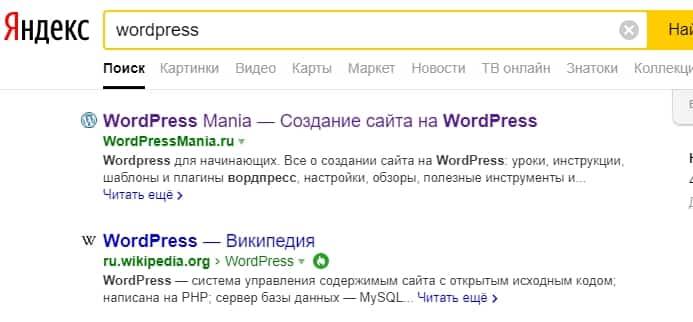 Главная страница сайты в поиске