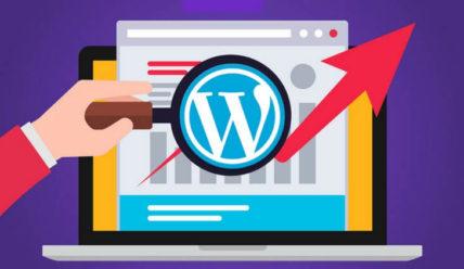 SEO плагин для WordPress с автоматической настройкой