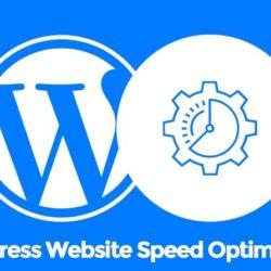 Оптимизация WordPress сайта с плагином Autoptimize