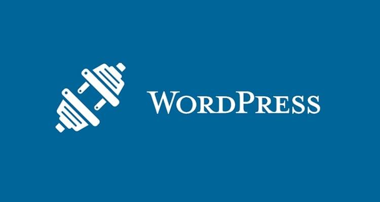 Блоки внимания WordPress (информационные) 1