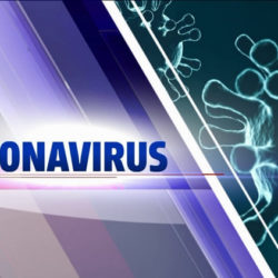 Плагин коронавирус (COVID-19) для WordPress