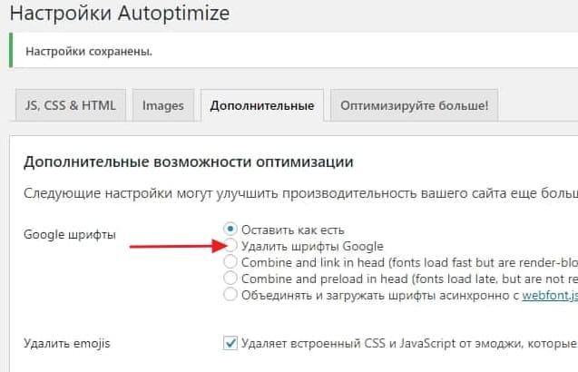 Параметры Extra позволяют удалить или оптимизировать шрифты Google