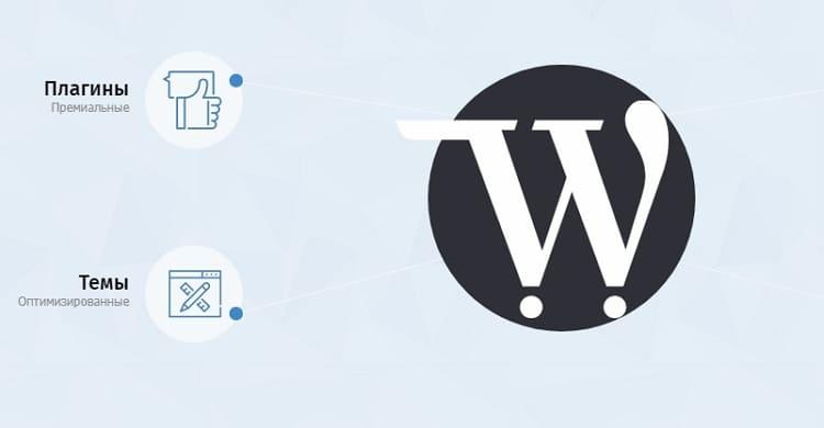 WordPress плагины, темы и скрипты собственной разработки