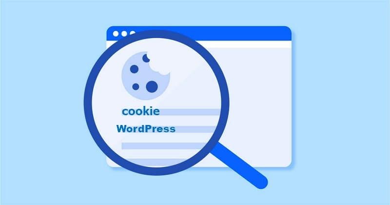 Как добавить уведомление о Cookie на сайт / блог WordPress