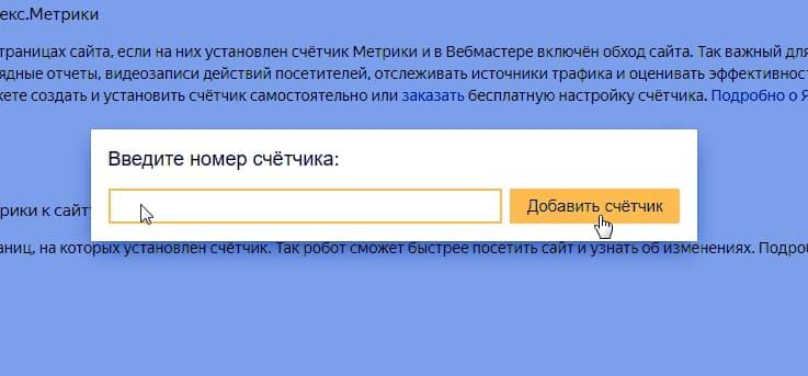 Укажите номер счетчика, к которому нужно привязать сайт