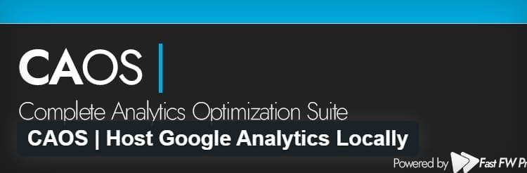 Как разместить Google Analytics локально в WordPress?